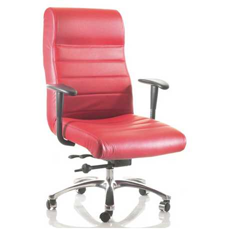 excelsior-executive-bariatric-chair.jpg  sc 1 st  Mike Ou0027Dwyer Office Furniture & Excelsior Executive Bariatric Chair