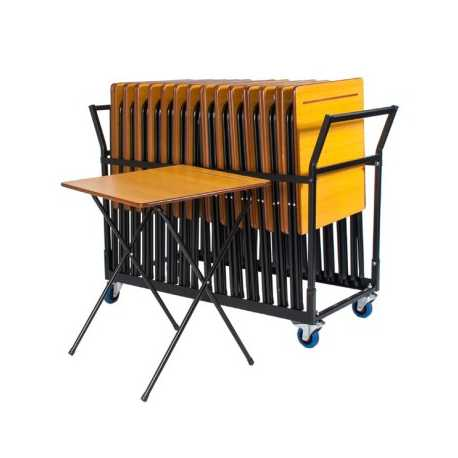 Exam Table Trolley Holds 25 Exam Tables