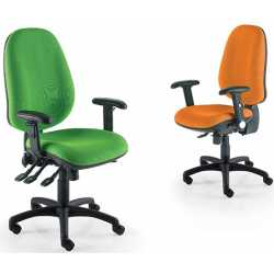 Eco Posture Chair
